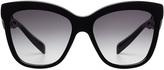 Dolce & Gabbana Oversize Sunglasses