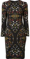 Alexander McQueen 'Obsession' print dress