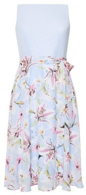 Dorothy Perkins Womens Billie & Blossom Petite Blue Lily Floral Print Midi Dress, Blue