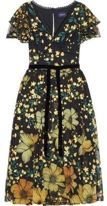 Marchesa Velvet-trimmed Floral-appliqued Embroidered Tulle Dress