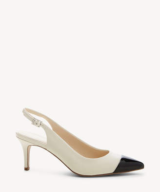 Enzo Angiolini Women's Damiana In Color: Black Shoes Size 6 Leather From Sole Society
