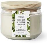 Williams-Sonoma Williams Sonoma Citronella Multi-Wick Fresh Mint Candle