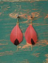 Free People Dipped Feather Earrings