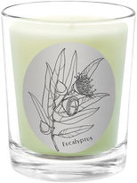 Qualitas Candles Eucalyptus Scented Candle
