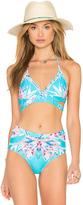 6 Shore Road La Playa Bikini Top