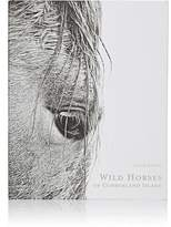 National Book Network Wild Horses Of Cumberland Island