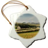 3dRose LLC orn_134420_1 Danita Delimont - Farms - Cuba, Pinar del Rio Province, Vinales Valley farm - CA11 WBI0463 - Walter Bibikow - Ornaments