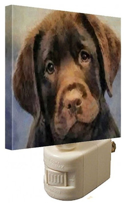 Doggylips Chocolate Labrador Retriever Night Light