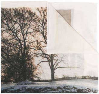 N.Peal Landscape Print Cashmere Pashmina