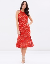 Cooper St Carnation Lace Dress