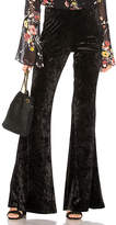 Band of Gypsies Crushed Velvet Retro Flare Pant