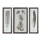 "Uttermost 33632 Feather Study - 32"" Study Prints Decorative Wall Art (Set of 3), Finish"