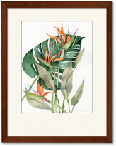 Courtside Market Wall Decor Botanical Birds Of Paradise Gallery Collection Framed Art