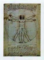 Leonardo 1art1 Posters Da Vinci Poster Art Print - Vitruvian Man III (12 x 9 inches)