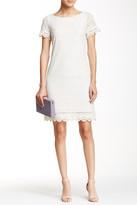 Maggy London Short Sleeve Lace Shift Dress