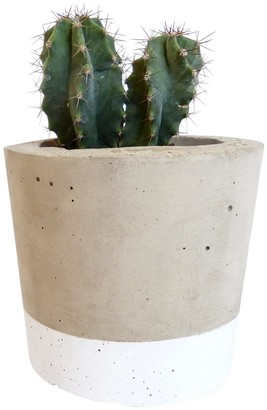 Olive Jennings Charlie White Concrete Planter