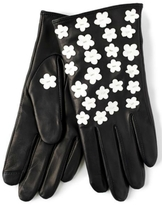 Echo Winter Touch Gloves