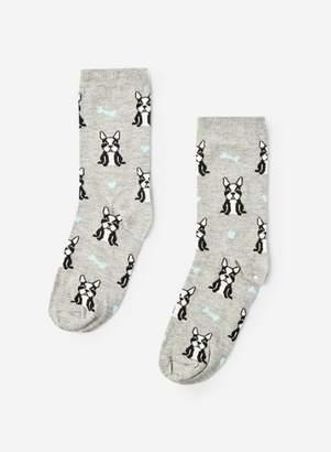 Dorothy Perkins Womens Grey French Bulldog Socks, Grey