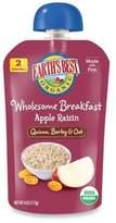 Earth's Best Organic 4 oz. Wholesome Breakfast Apple Raisin