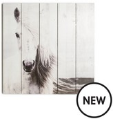 Graham & Brown Horse Wall Art On Fir Wood