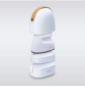Homedics PerfectSteam Professional Mini Garment Steamer & Iron