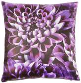 Laurence Llewellyn Bowen Chrysanthemum Cushion