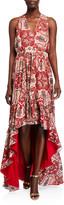 Ramy Brook Savanna Printed High-Low Dress