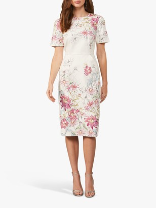 Phase Eight Marie Floral Print Knee Length Dress, Ivory/Blossom