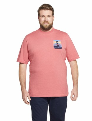 Izod Men's Short Sleeve Graphic Tee (Big & Tall) Blue Revival Large Tall