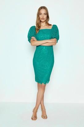 Coast Lace Puff Sleeve Bardot Bodycon Dress