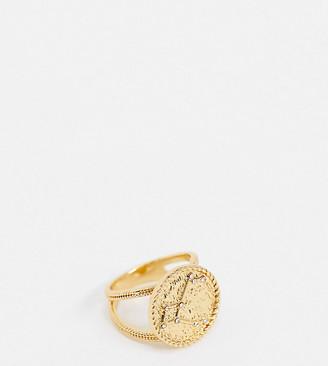 Reclaimed Vintage inspired premium 14k pegasus constellation ring in gold