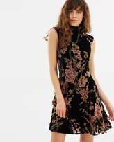 Elliatt Salon Dress