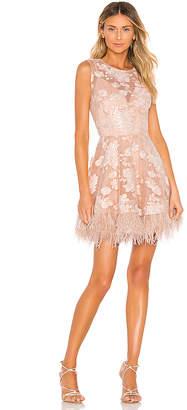 Bronx and Banco Viola Feather Dress