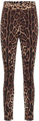 Dolce & Gabbana Leopard-print stretch-silk leggings