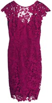 Asos Pink Lace Dress for Women