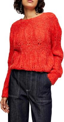 Topshop Petal Pointelle Sweater