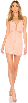 NBD Coleen Dress