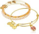 Alex and Ani Lady Bug Set of 3 Rafaelian Silver Bangle Bracelet