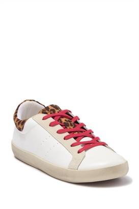 Steve Madden Billboard Sleek Leopard Printed Lace-Up Sneaker
