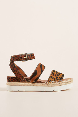 Franco Sarto Sarto by Calvin Sport Sandals By in Assorted Size 6