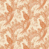 Houseology Timorous Beasties Pheasant Wallpaper - Oranges On Cream