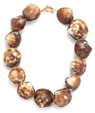 Timeless Pearly Shell Choker Necklace - Brown