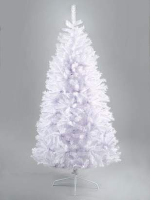 White Regal Fir Christmas Tree