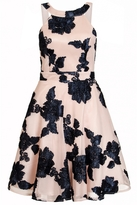 Quiz Nude And Navy Mesh Flower Applique Dress