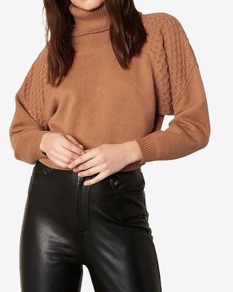 Express Bb Dakota Turtleneck Dolman Sleeve Sweater
