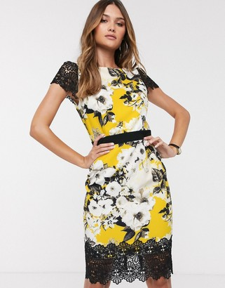 Paper Dolls lace sleeve floral pencil midi dress with lace hem