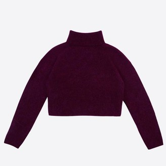 Lowie Cropped Aubergine Roll Neck Jumper - S