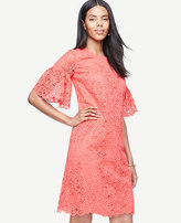 Ann Taylor Leaf Lace Flare Sleeve Shift Dress