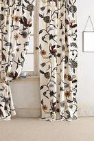 Mantadia Curtain