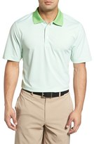 Cutter & Buck Men's Cardinal Stripe Drytec Polo